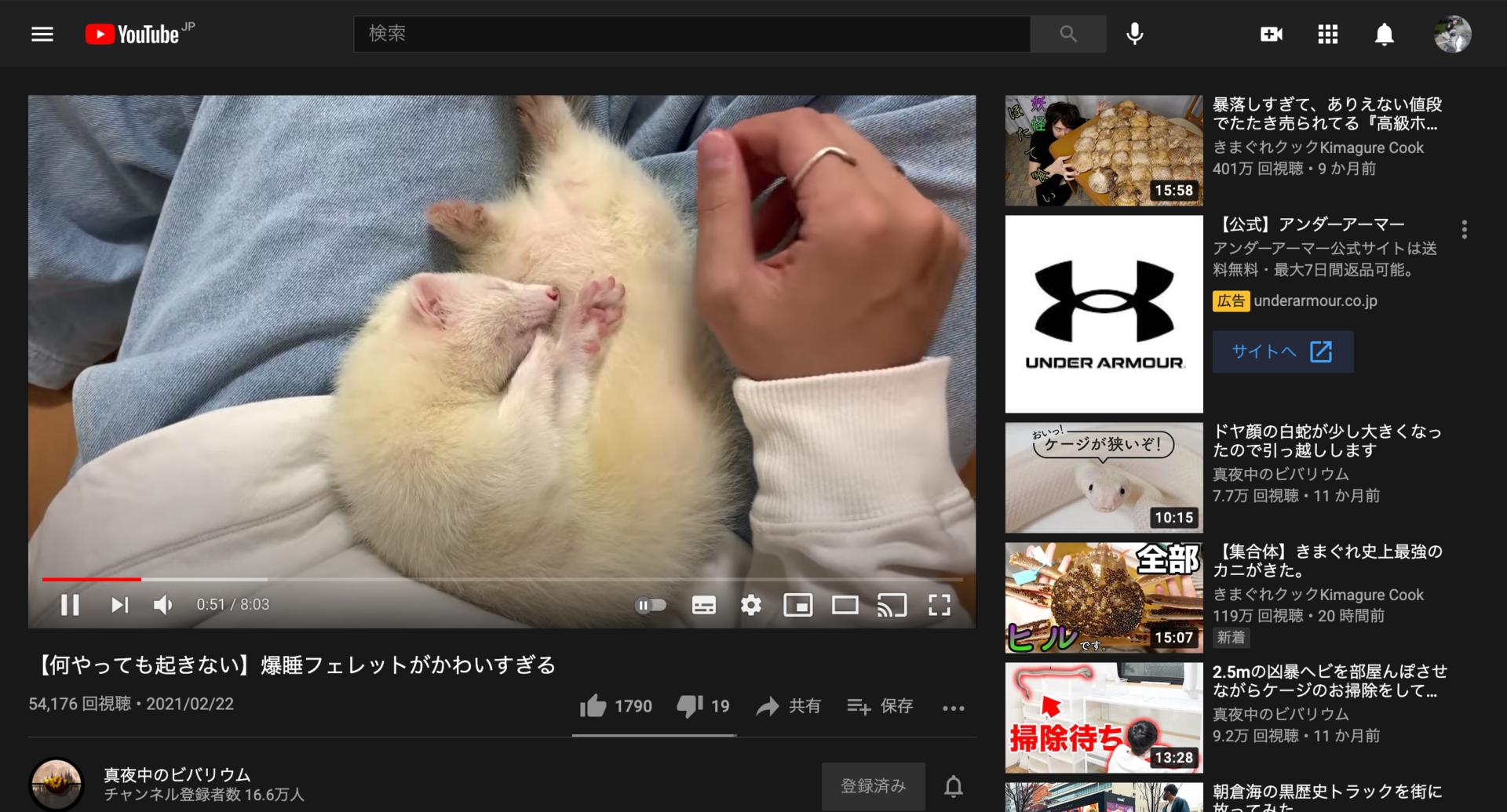 YouTube 自動再生切り替え